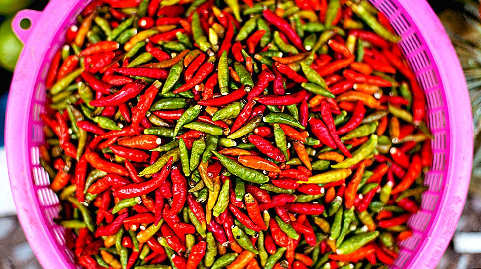 Hot Chilli Peppers, mis on seotud pikema eluga