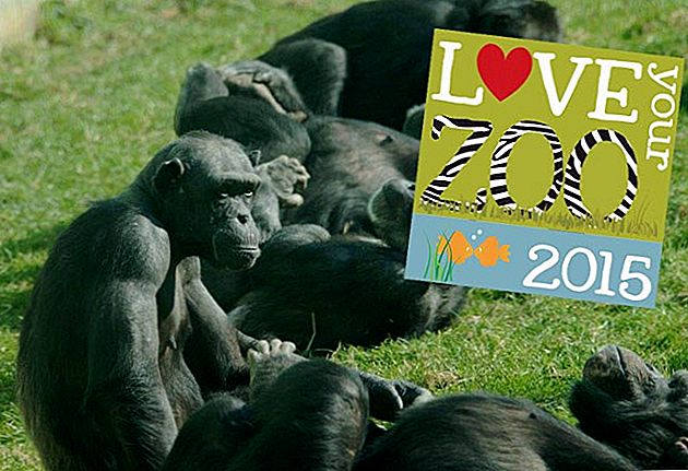 ¡Es la semana de Love Your Zoo 2015!